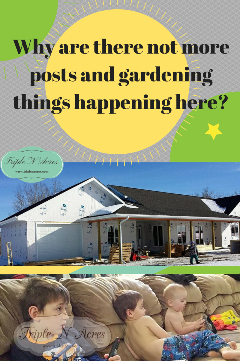 Why are there not more posts and gardening things happening here?
